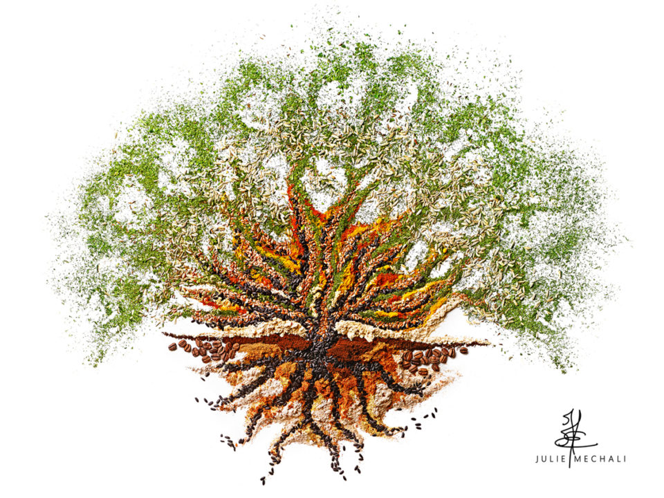 JM.arbre de vie cycle perpetuel