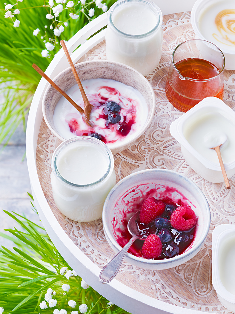 CNIEL YAOURT ET FROMAGE BLANC generique yaourt